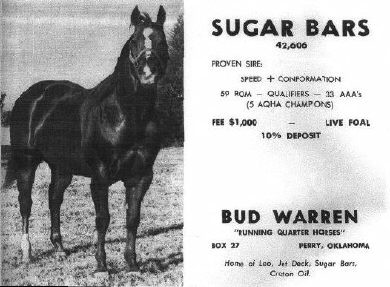 sugarbars_advert.jpg